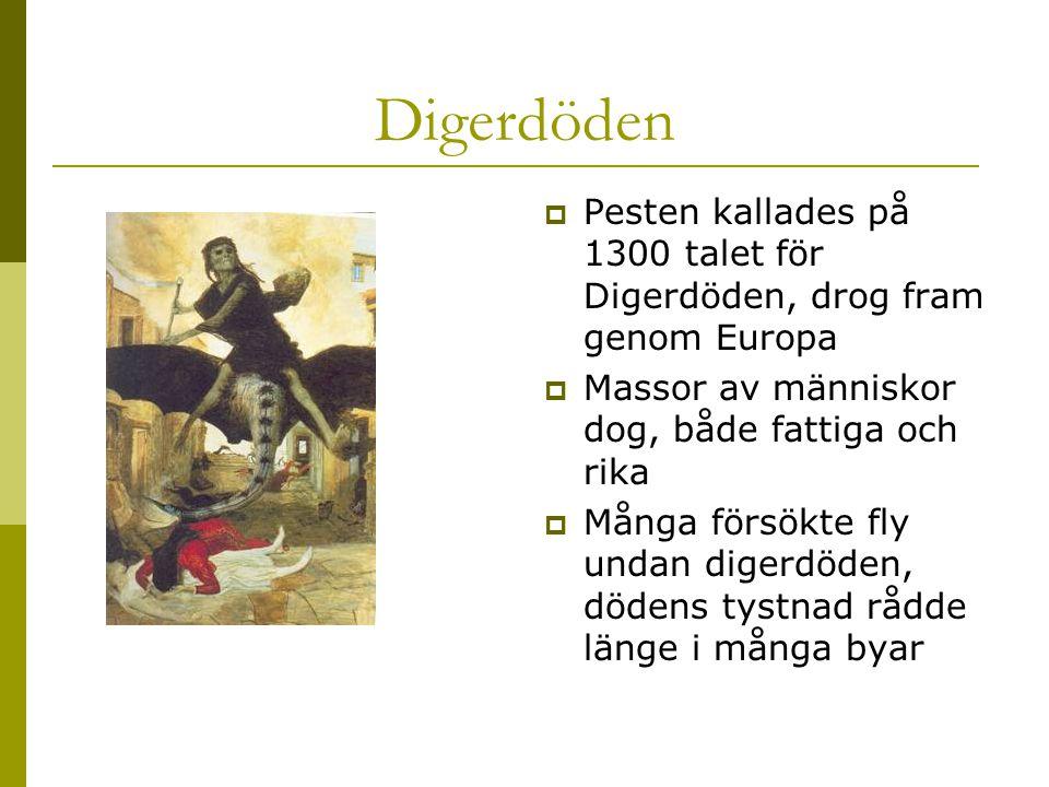 Digerdöden Pesten kallades på 1300 talet för Digerdöden, drog fram genom Europa. Massor av människor dog, både fattiga och rika.