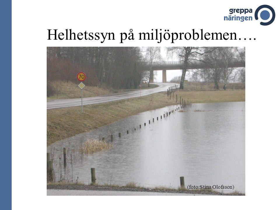 Helhetssyn på miljöproblemen….
