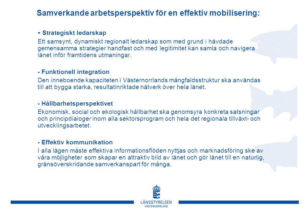 Samverkande arbetsperspektiv för en effektiv mobilisering: