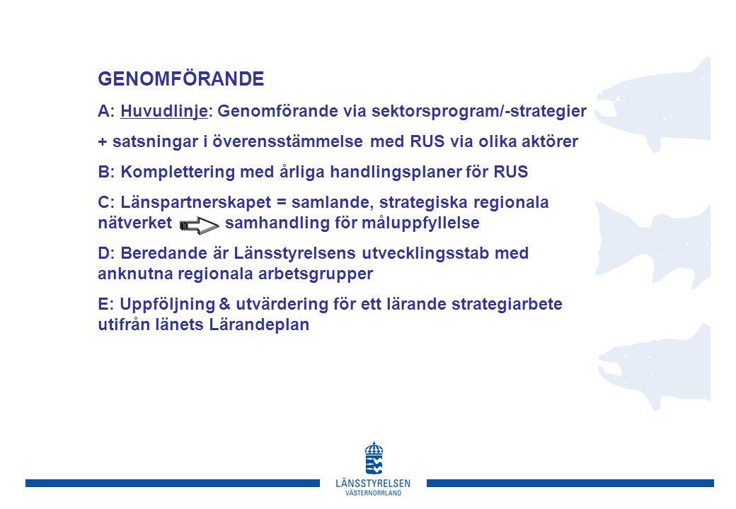 GENOMFÖRANDE A: Huvudlinje: Genomförande via sektorsprogram/-strategier. + satsningar i överensstämmelse med RUS via olika aktörer.