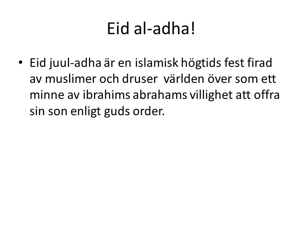 Eid al-adha!