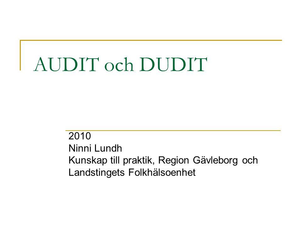 AUDIT och DUDIT 2010 Ninni Lundh
