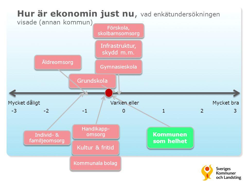 Hur är ekonomin just nu, vad enkätundersökningen visade (annan kommun)