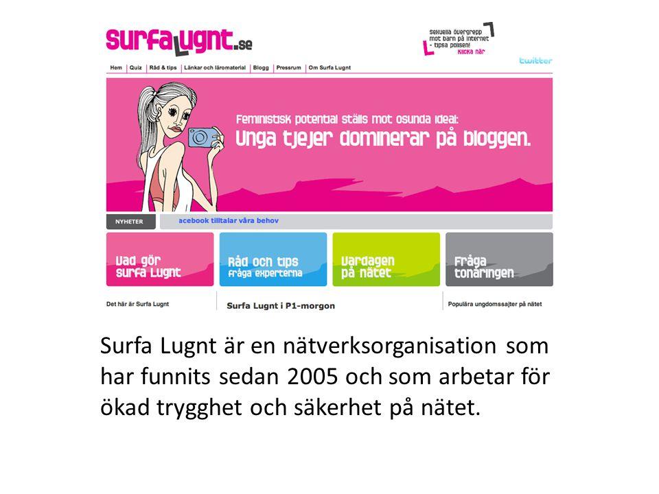 Surfa Lugnt är en nätverksorganisation som har funnits sedan 2005 och som arbetar för ökad trygghet och säkerhet på nätet.
