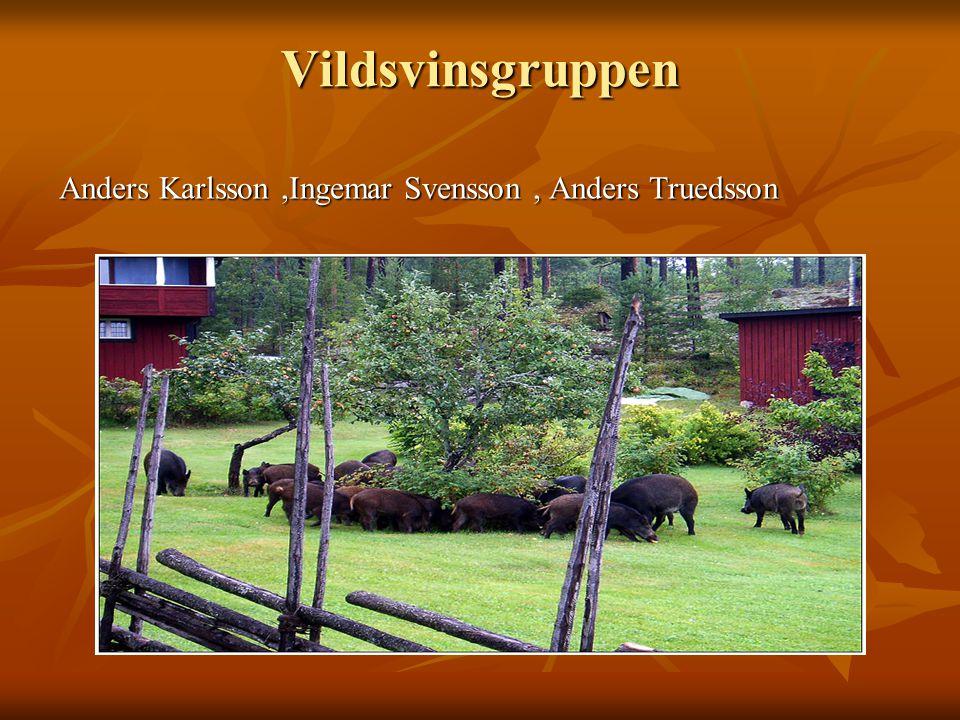 Vildsvinsgruppen Anders Karlsson ,Ingemar Svensson , Anders Truedsson