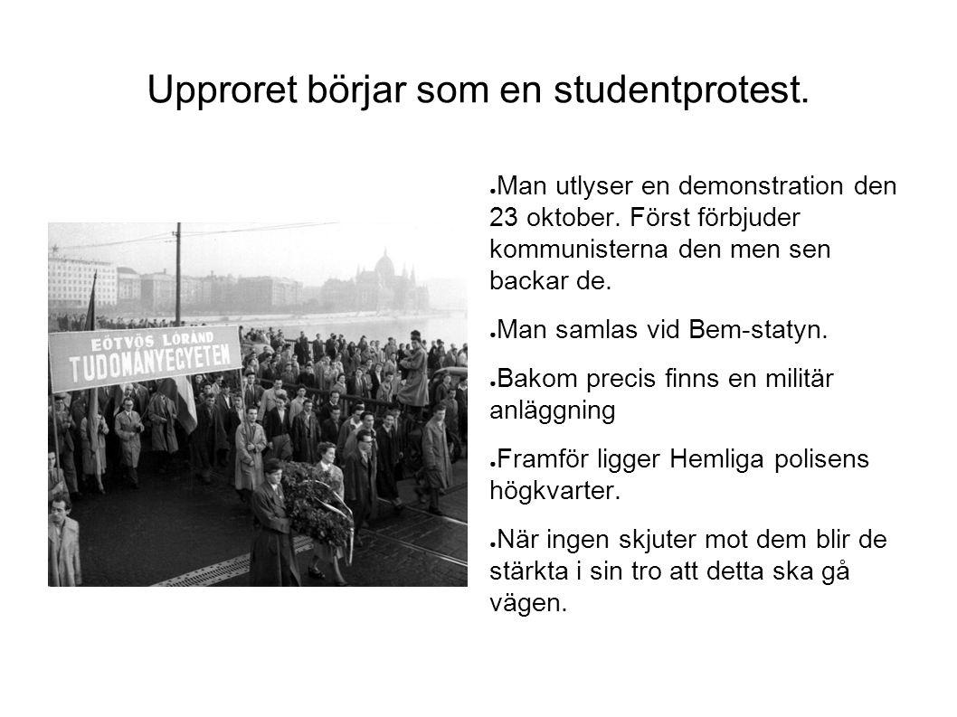Upproret börjar som en studentprotest.