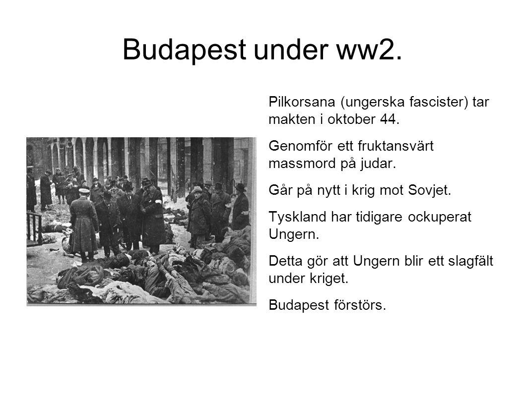 Budapest under ww2. Pilkorsana (ungerska fascister) tar makten i oktober 44. Genomför ett fruktansvärt massmord på judar.