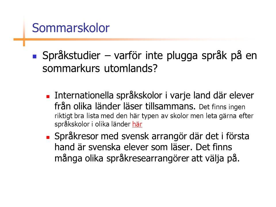 Sommarskolor Språkstudier – varför inte plugga språk på en sommarkurs utomlands