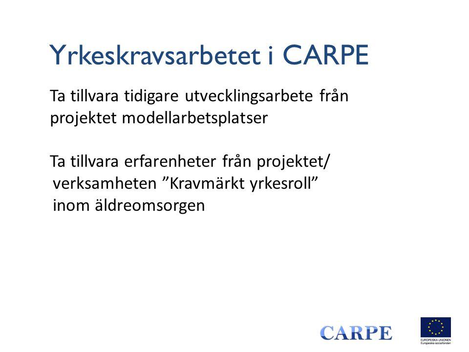 Yrkeskravsarbetet i CARPE
