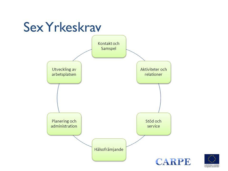 Sex Yrkeskrav Kontakt och Samspel Aktiviteter och relationer