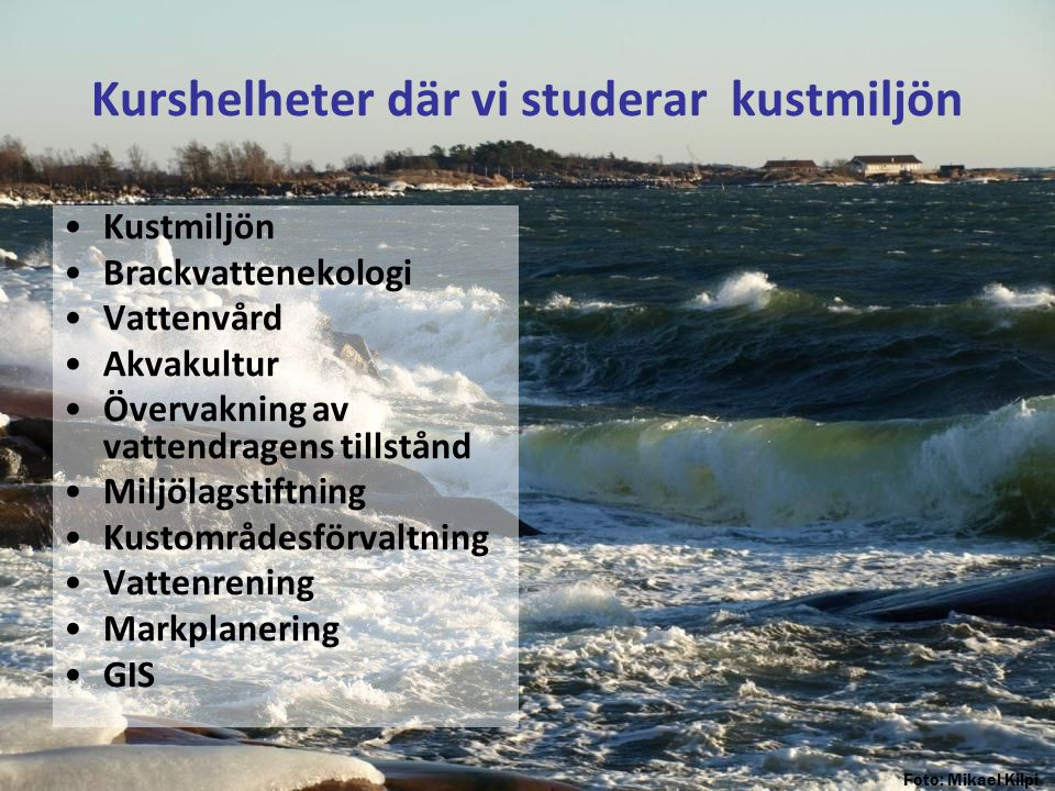 Kurshelheter där vi studerar kustmiljön