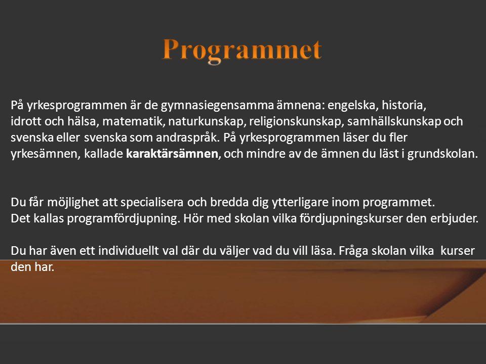 Programmet På yrkesprogrammen är de gymnasiegensamma ämnena: engelska, historia,