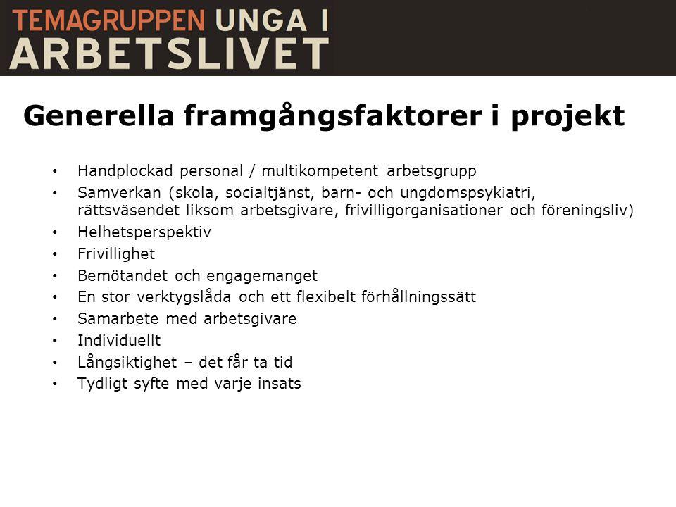 Generella framgångsfaktorer i projekt