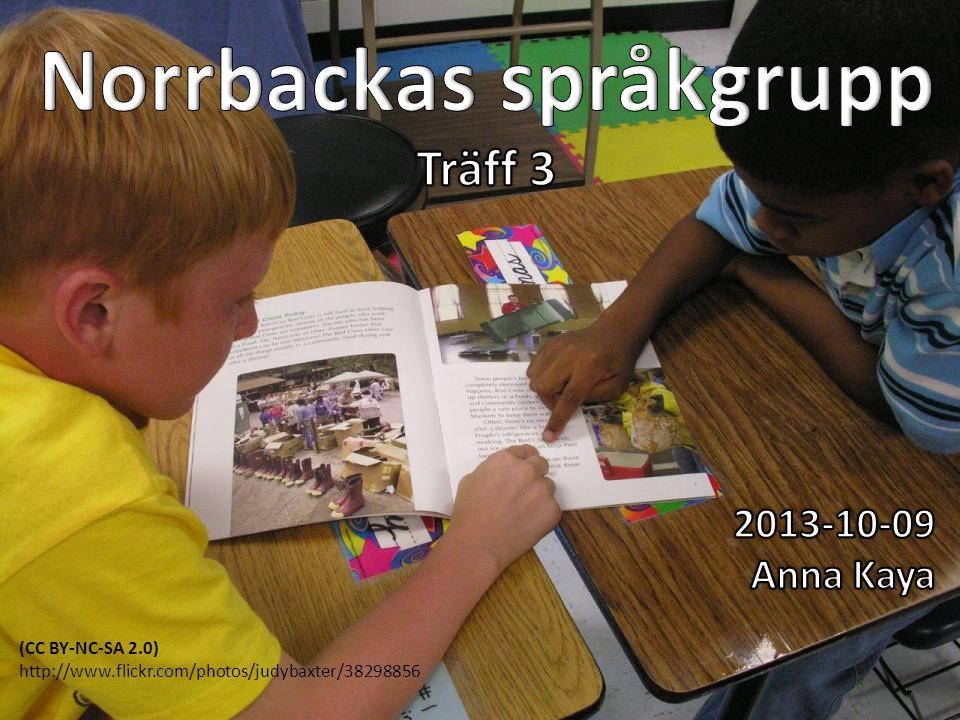 Norrbackas språkgrupp