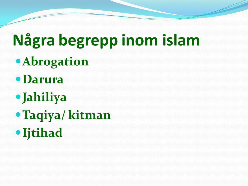 Några begrepp inom islam