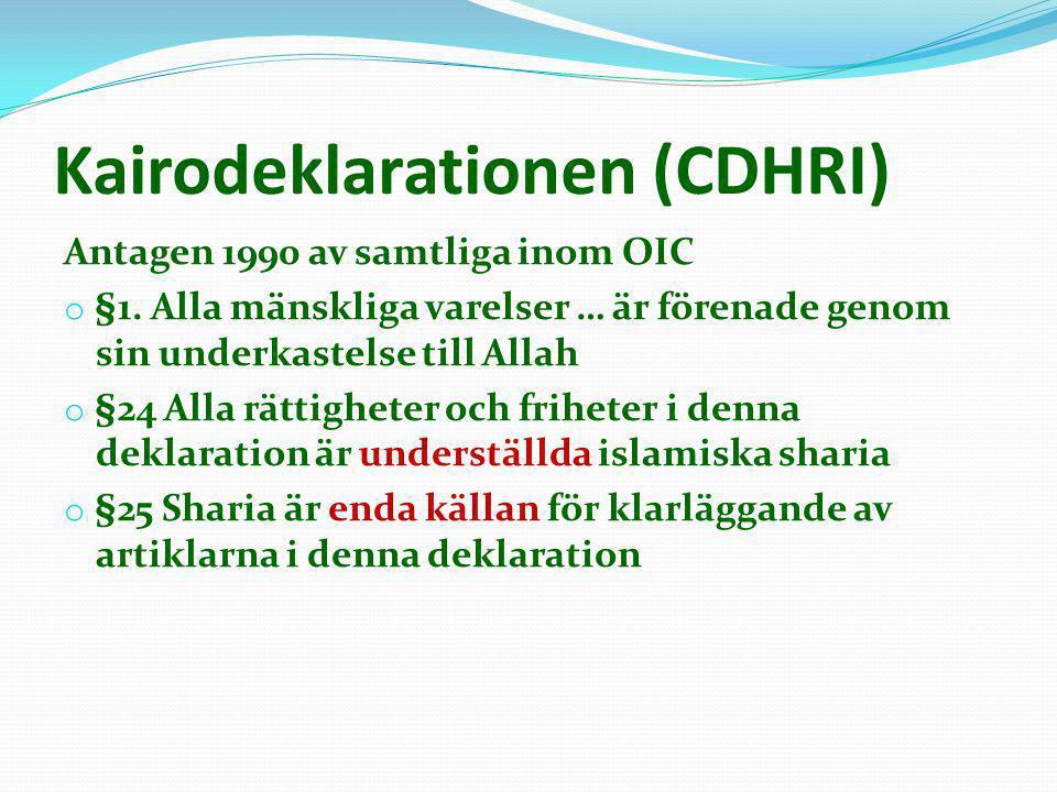 Kairodeklarationen (CDHRI)