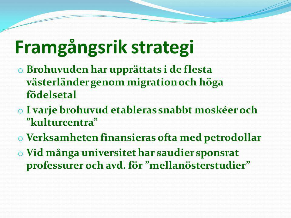 Framgångsrik strategi