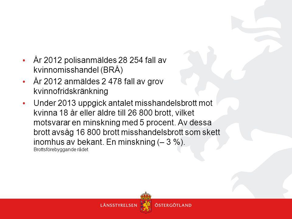 År 2012 polisanmäldes 28 254 fall av kvinnomisshandel (BRÅ)