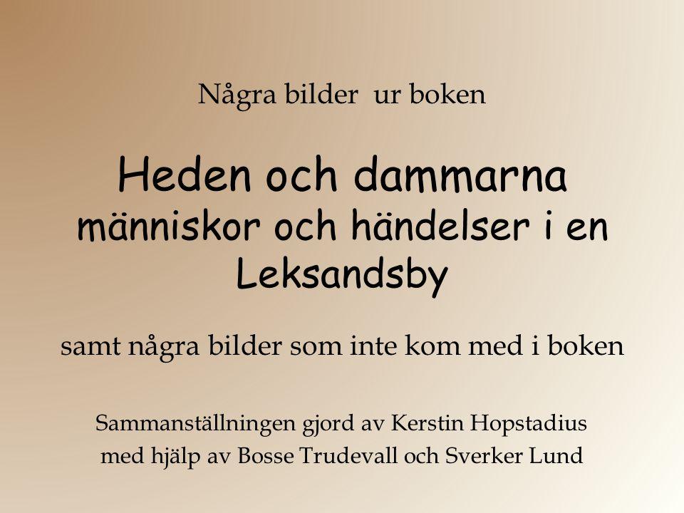 Heden och dammarna människor och händelser i en Leksandsby