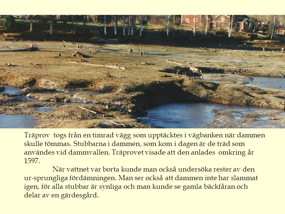 Träprov togs från en timrad vägg som upptäcktes i vägbanken när dammen skulle tömmas. Stubbarna i dammen, som kom i dagen är de träd som användes vid dammvallen. Träprovet visade att den anlades omkring år 1597.