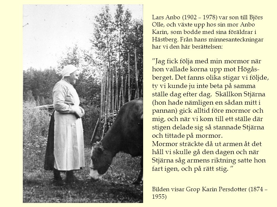 Lars Anbo (1902 – 1978) var son till Björs Olle, och växte upp hos sin mor Anbo Karin, som bodde med sina föräldrar i Hästberg. Från hans minnesanteckningar har vi den här berättelsen: