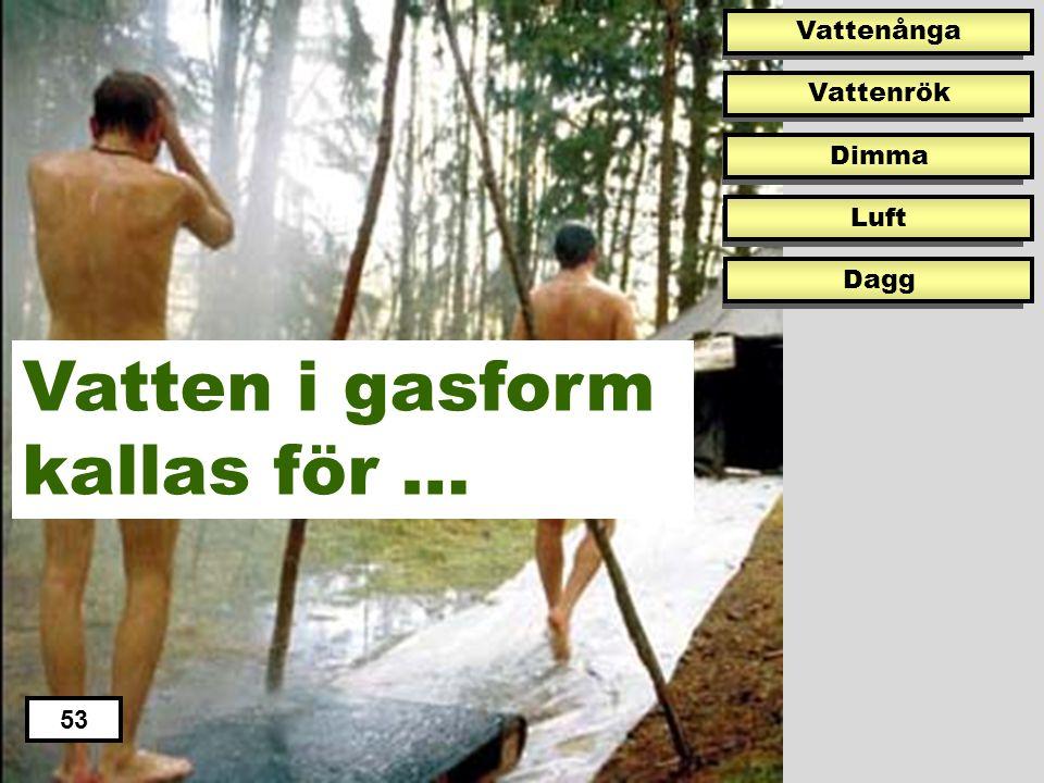Vatten i gasform kallas för …