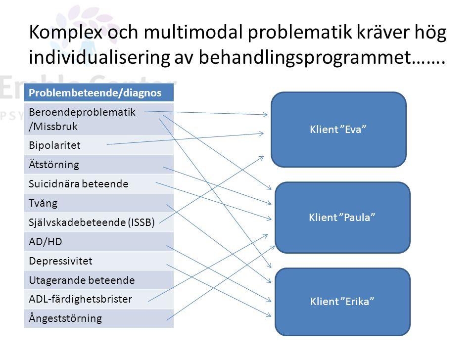 Komplex och multimodal problematik kräver hög individualisering av behandlingsprogrammet…….