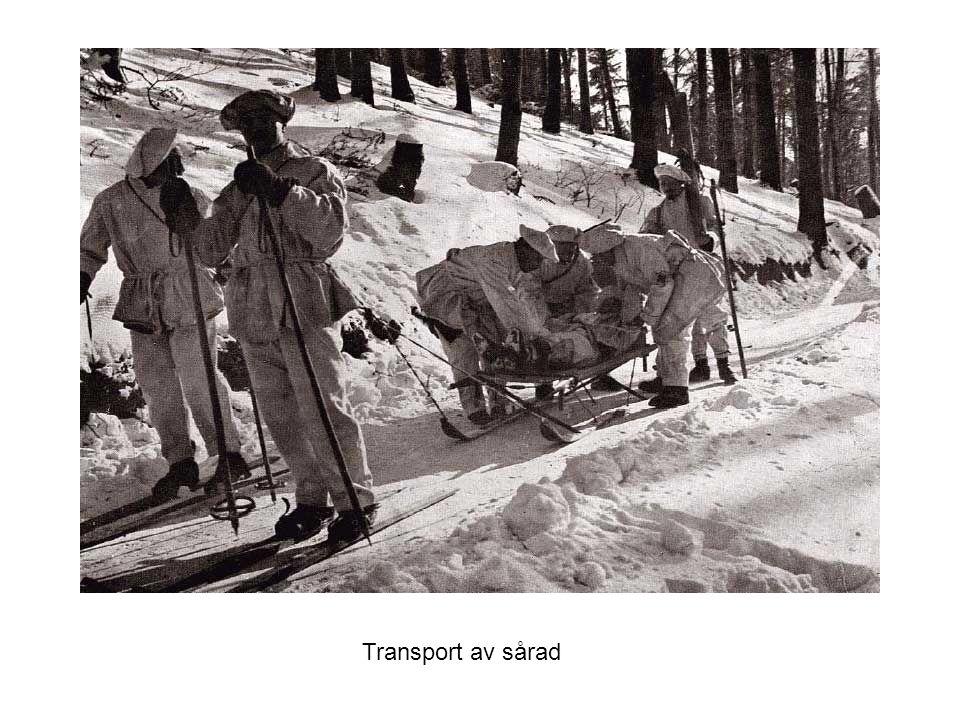 Transport av sårad