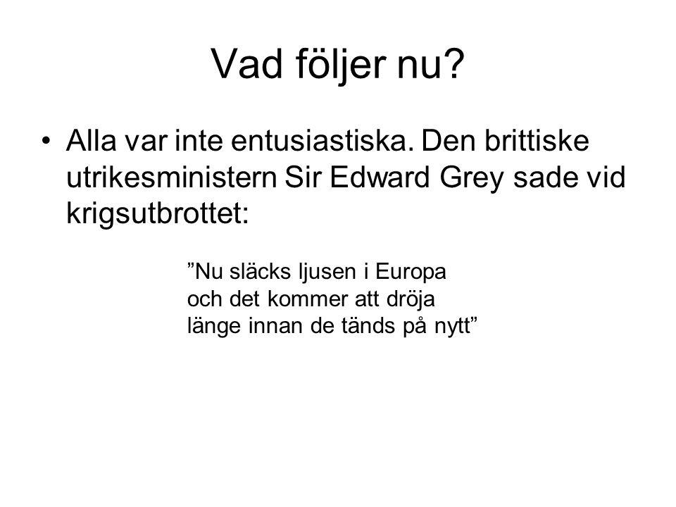 Vad följer nu Alla var inte entusiastiska. Den brittiske utrikesministern Sir Edward Grey sade vid krigsutbrottet: