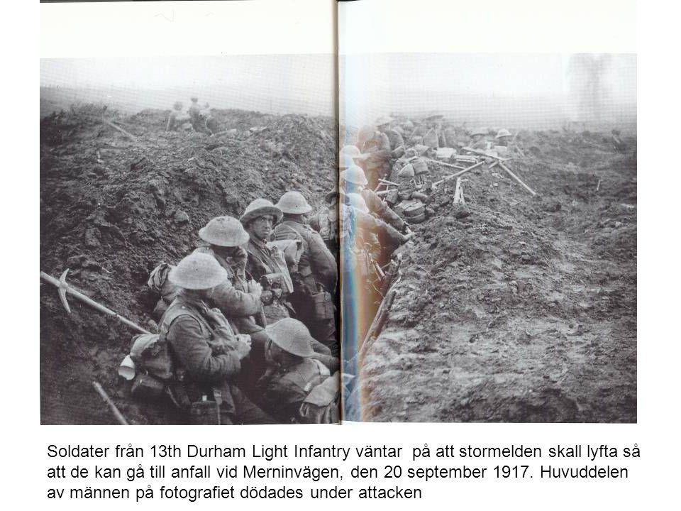 Soldater från 13th Durham Light Infantry väntar på att stormelden skall lyfta så att de kan gå till anfall vid Merninvägen, den 20 september 1917.