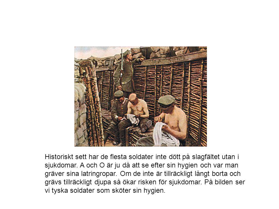Historiskt sett har de flesta soldater inte dött på slagfältet utan i sjukdomar.