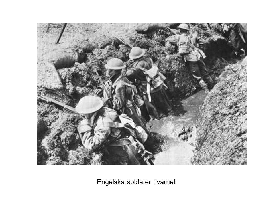 Engelska soldater i värnet