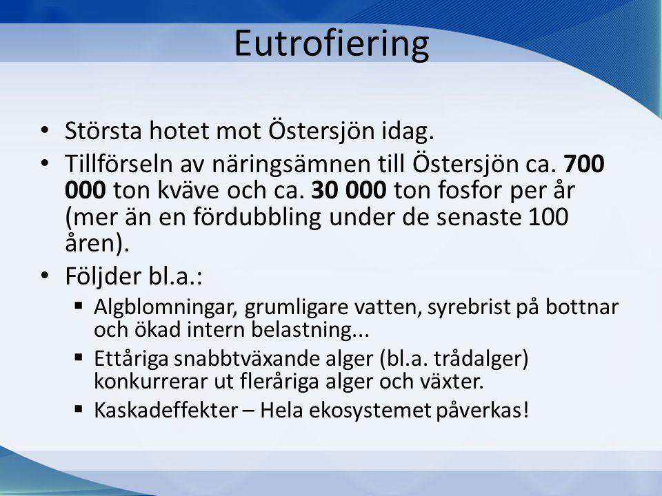 Eutrofiering Största hotet mot Östersjön idag.