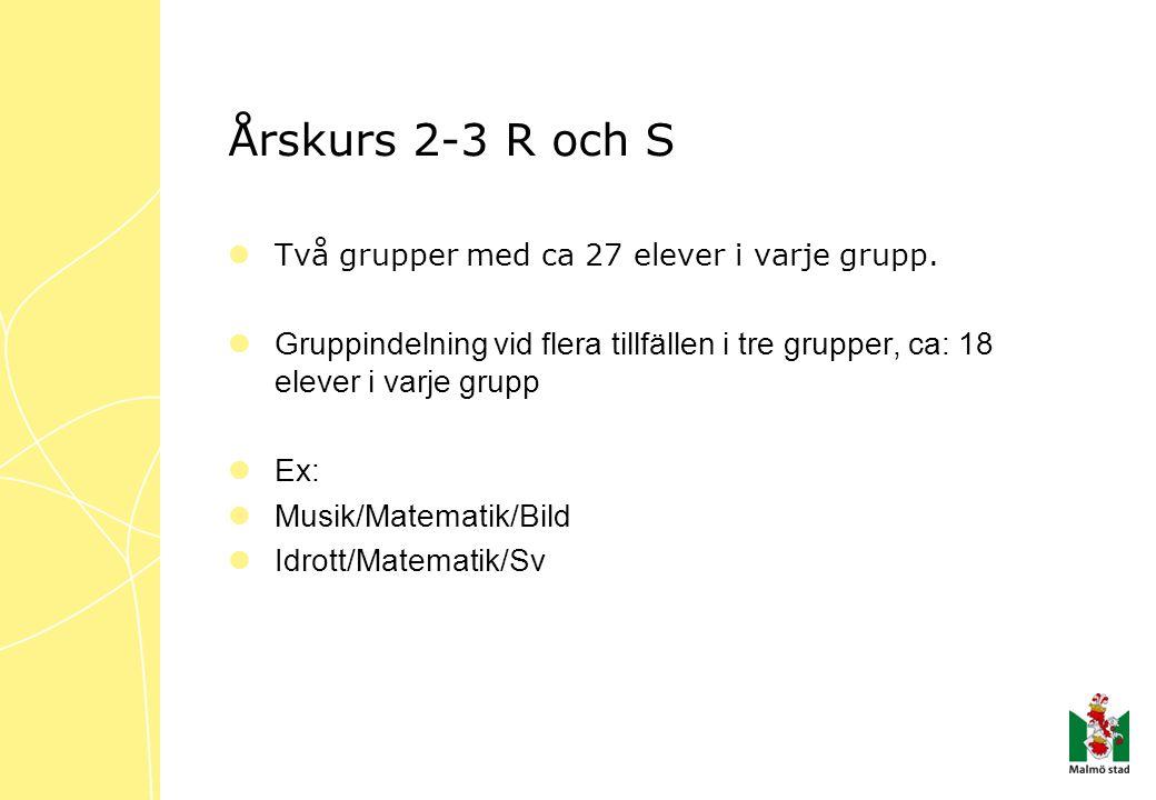 Årskurs 2-3 R och S Två grupper med ca 27 elever i varje grupp. Gruppindelning vid flera tillfällen i tre grupper, ca: 18 elever i varje grupp.