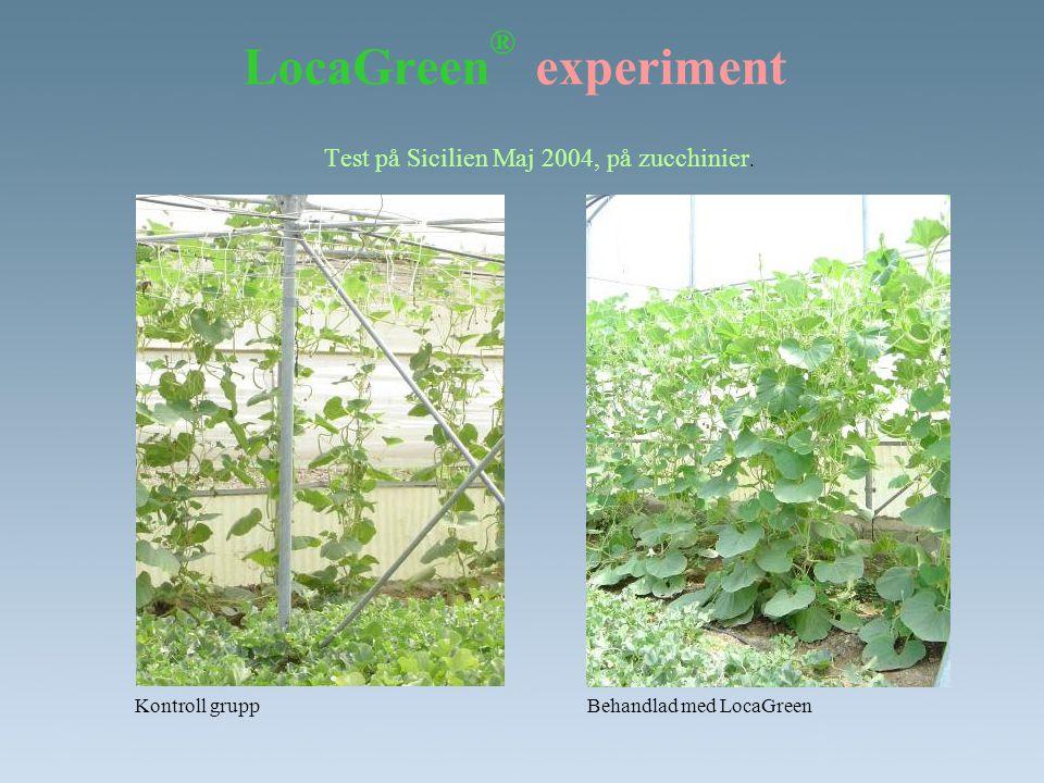 LocaGreen® experiment
