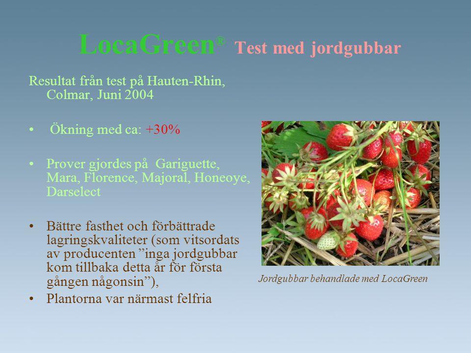 LocaGreen® Test med jordgubbar