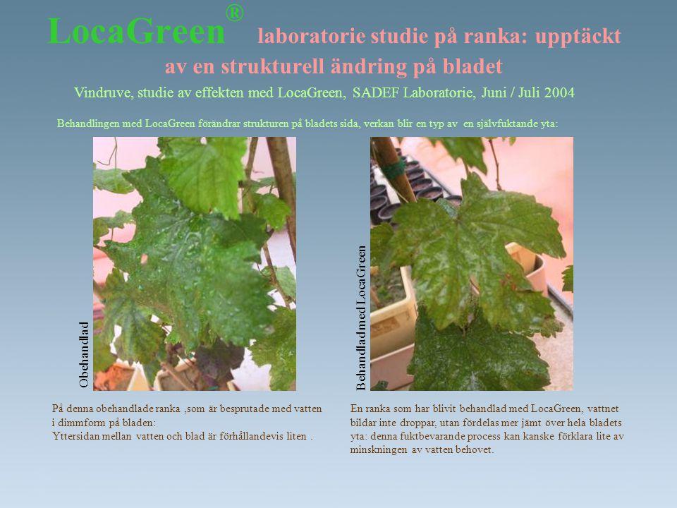 LocaGreen® laboratorie studie på ranka: upptäckt av en strukturell ändring på bladet