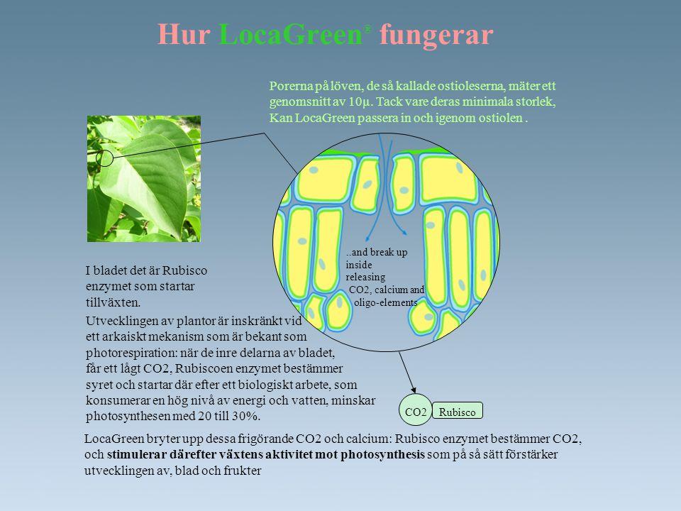 Hur LocaGreen® fungerar