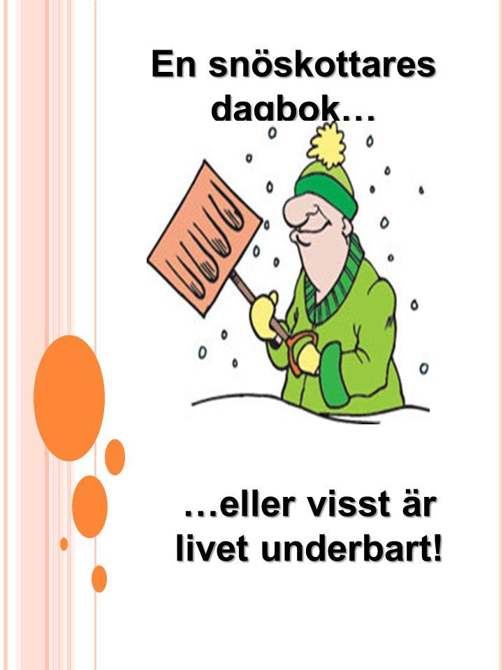 En snöskottares dagbok… …eller visst är livet underbart!