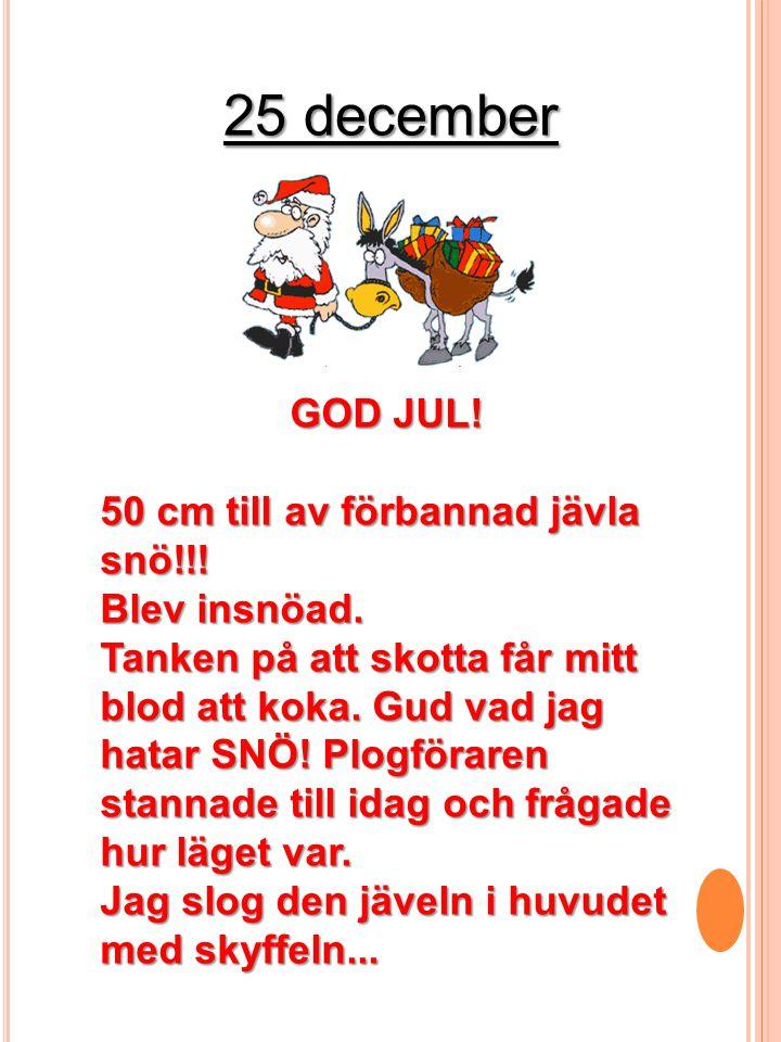 25 december GOD JUL! 50 cm till av förbannad jävla snö!!!