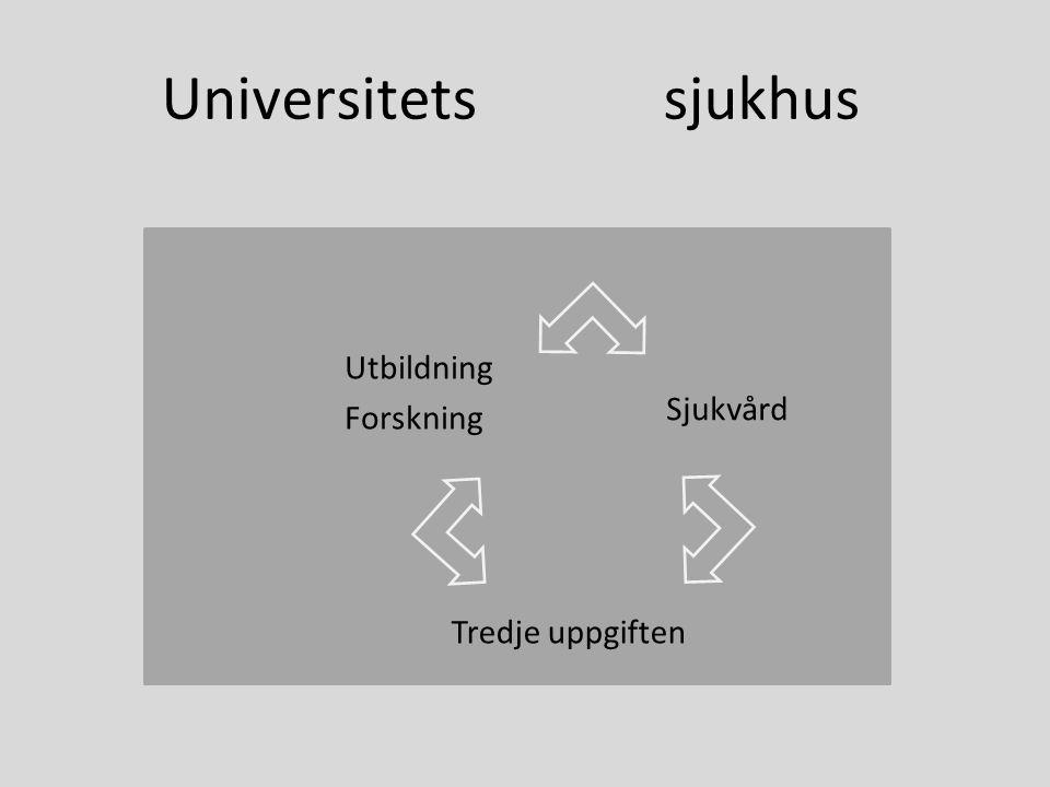 Universitets sjukhus Utbildning Forskning Sjukvård Tredje uppgiften
