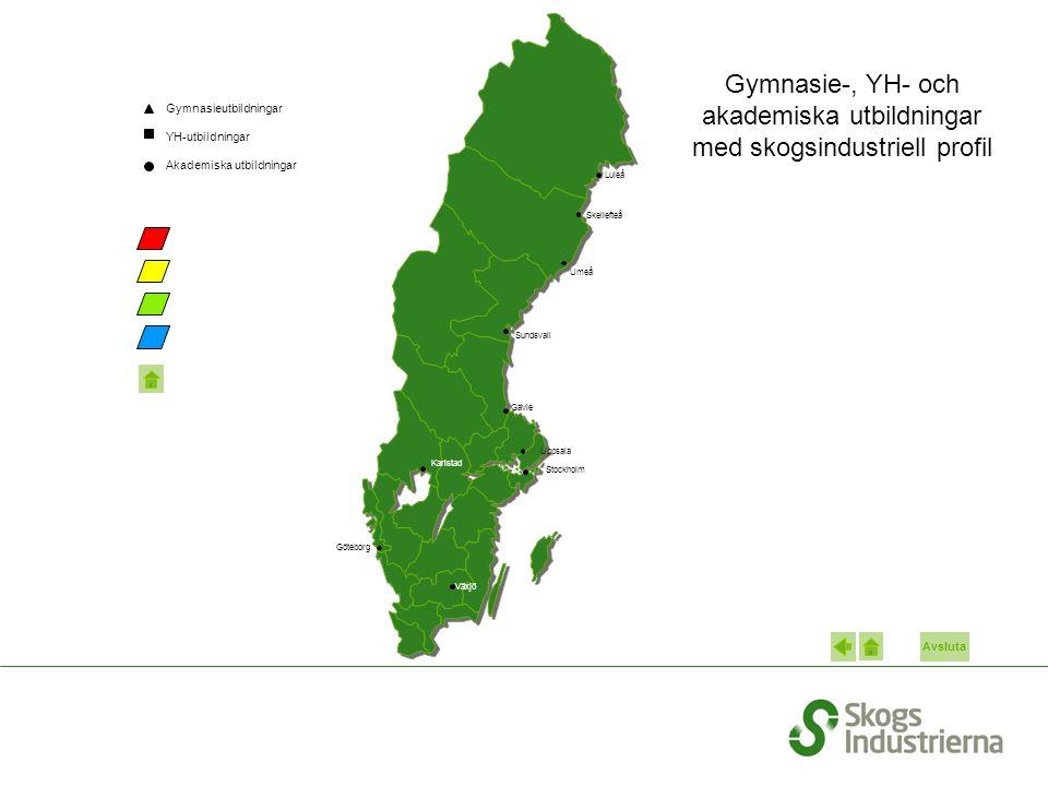 Gymnasie-, YH- och akademiska utbildningar med skogsindustriell profil