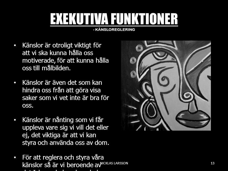 EXEKUTIVA FUNKTIONER - KÄNSLOREGLERING