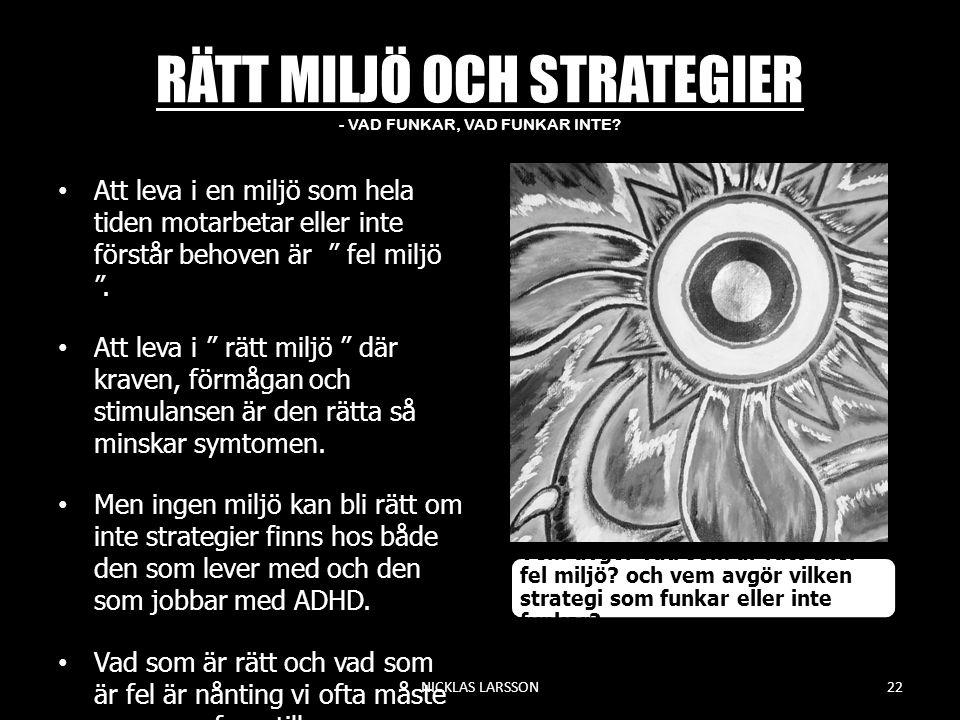 RÄTT MILJÖ OCH STRATEGIER - VAD FUNKAR, VAD FUNKAR INTE