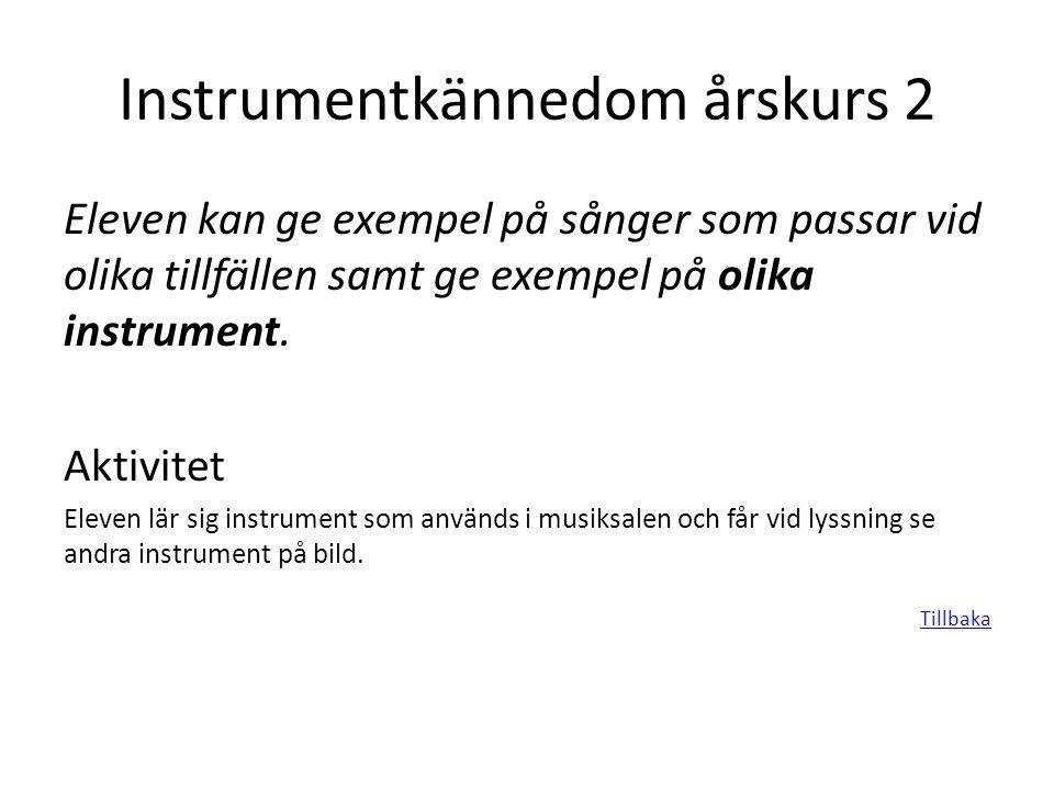 Instrumentkännedom årskurs 2