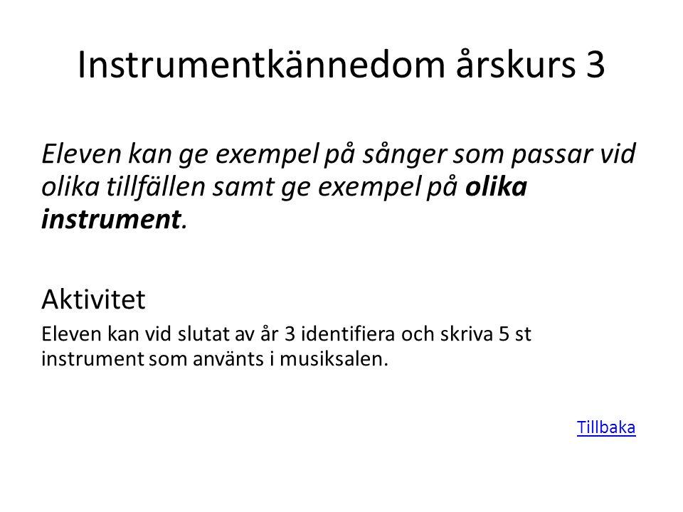 Instrumentkännedom årskurs 3