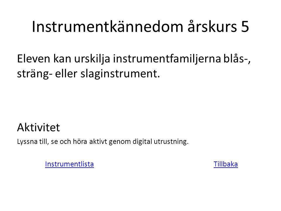 Instrumentkännedom årskurs 5