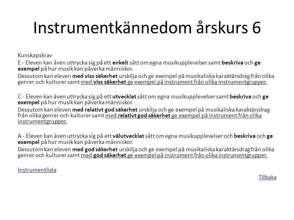 Instrumentkännedom årskurs 6