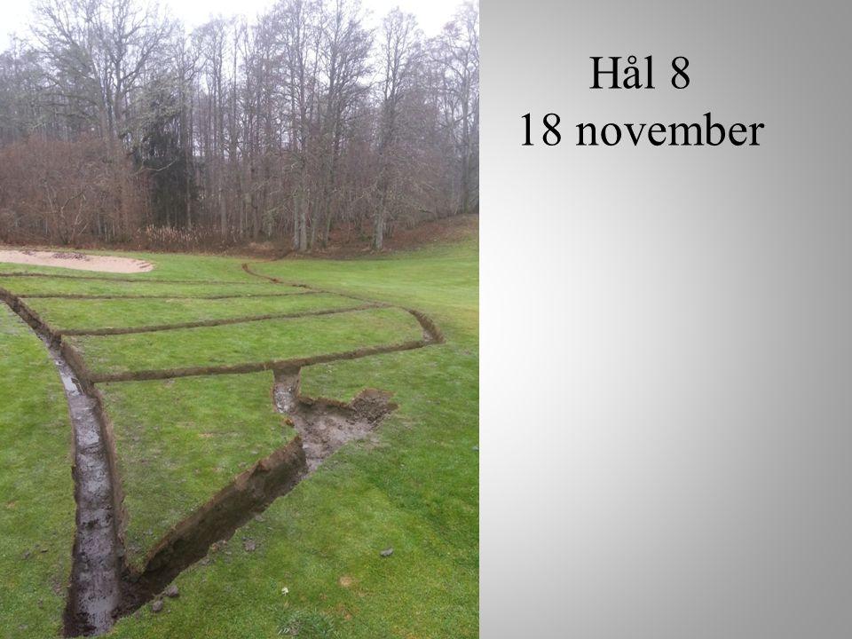 Hål 8 18 november