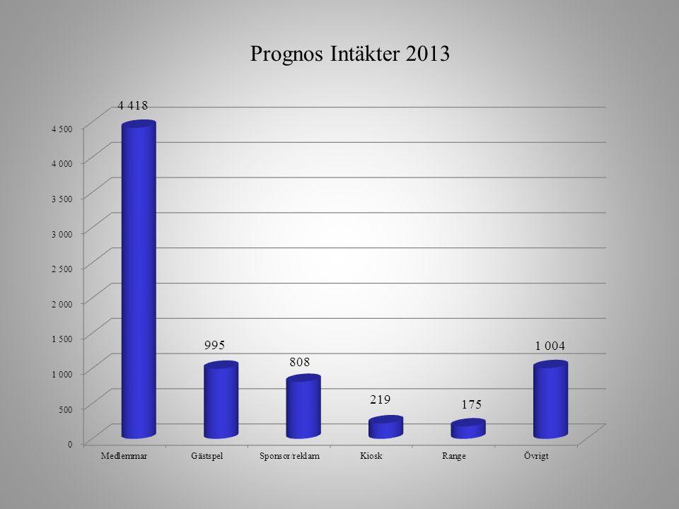 Prognos Intäkter 2013